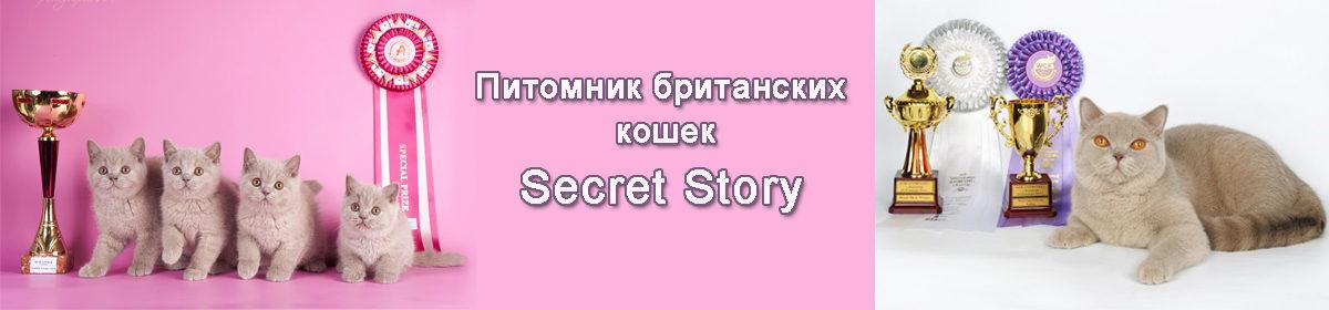 """Питомник британских кошек """"Secret Story"""""""